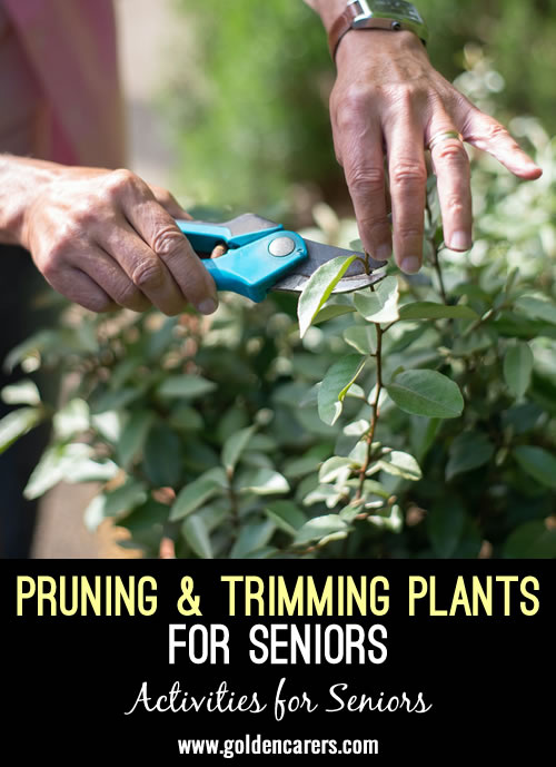 Simple gardening tasks provide a wonderful opportunity to get outdoors and reminisce while enjoying the benefits of sunshine and fresh air.