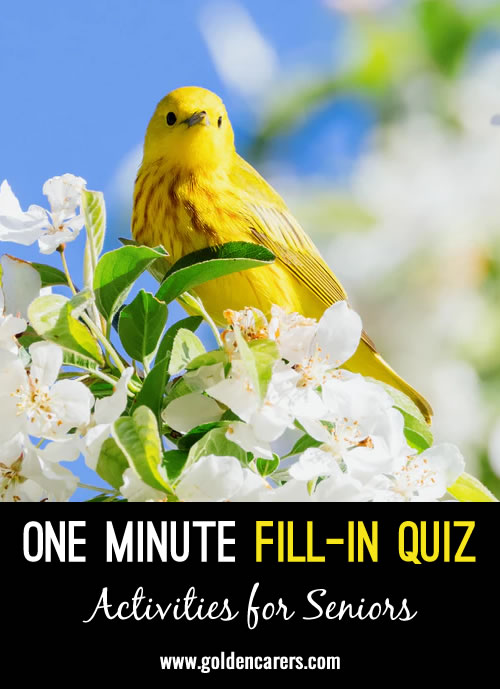 Quickies - one minute activities - fill ins