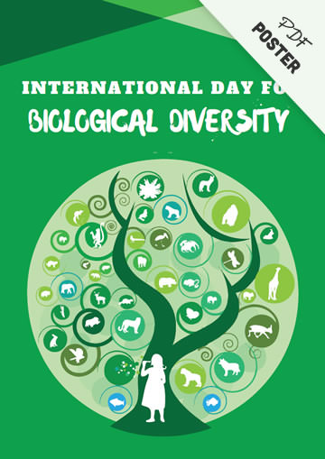 Printable Biological Diversity Poster!