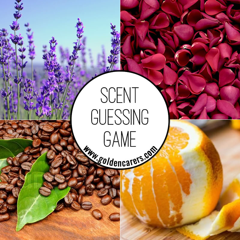 Scent Guessing