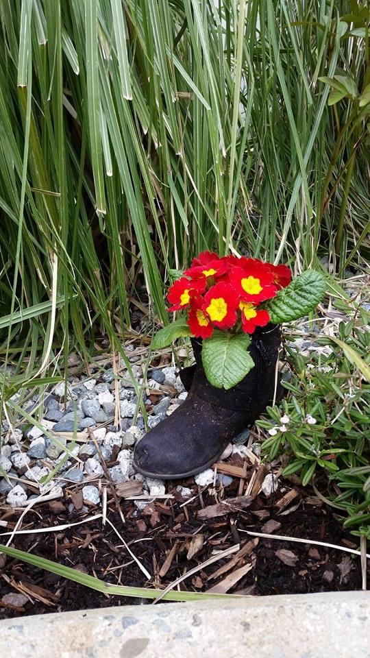 How To Start A Garden Club For Seniors