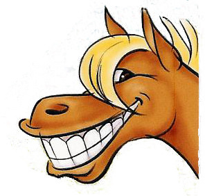 3800x1400 image | Horse tattoo, St tropez spray tan, Horse pictures