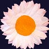 Coffee Filter Sun Flowers