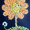 Art with Seeds and Pulses