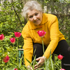 How to start a Garden Club for Seniors
