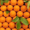 Orange Sensory Experience