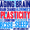 Brain Games & Brain Fitness