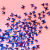 The Wonderful World of the Butterfly