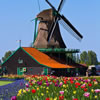 15 Snippets of Dutch Trivia