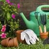 Easy Gardening Activities