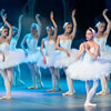 A Night at the Ballet