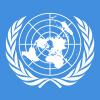 International Flag Decorations