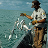 Name the Fishing Equipment