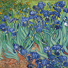 Artist Impression - Vincent Van Gogh - Irises